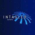 Intagleo Systems