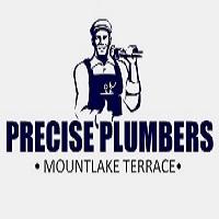 Precise Plumbers Mountlake Terrace