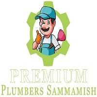 Premium Plumbers Sammamish