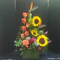 Dallas Texas Florist