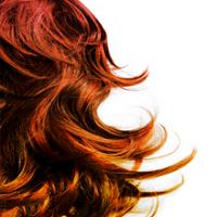 Rosarios Boutique And Hair Salon