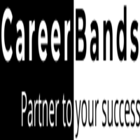 Professional career advice-