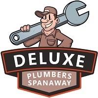 Deluxe Plumbers Spanaway