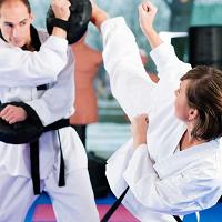 Troy Dorseys Karate And Fitness - Kickboxing
