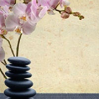 Zenergize Wellness Spa