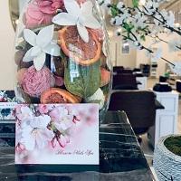 Blossom Nails Spa
