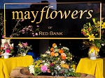 Mayflowers of Red Bank