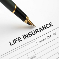 W E G Insurance
