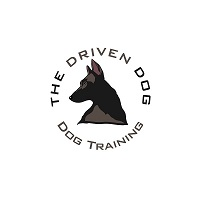 The Driven Dog