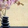 Center For A Balanced Life Inc