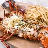 Hawkes Lobster