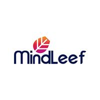 Mindleef Technology web and app development company